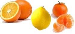 fruits-agrumes